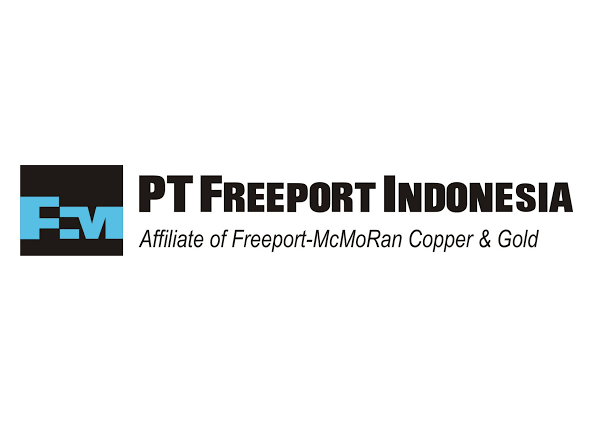Pt Freeport Indonesia 2003 T T Projects